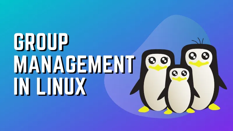 5 Commands for Group Management in Linux in 2020