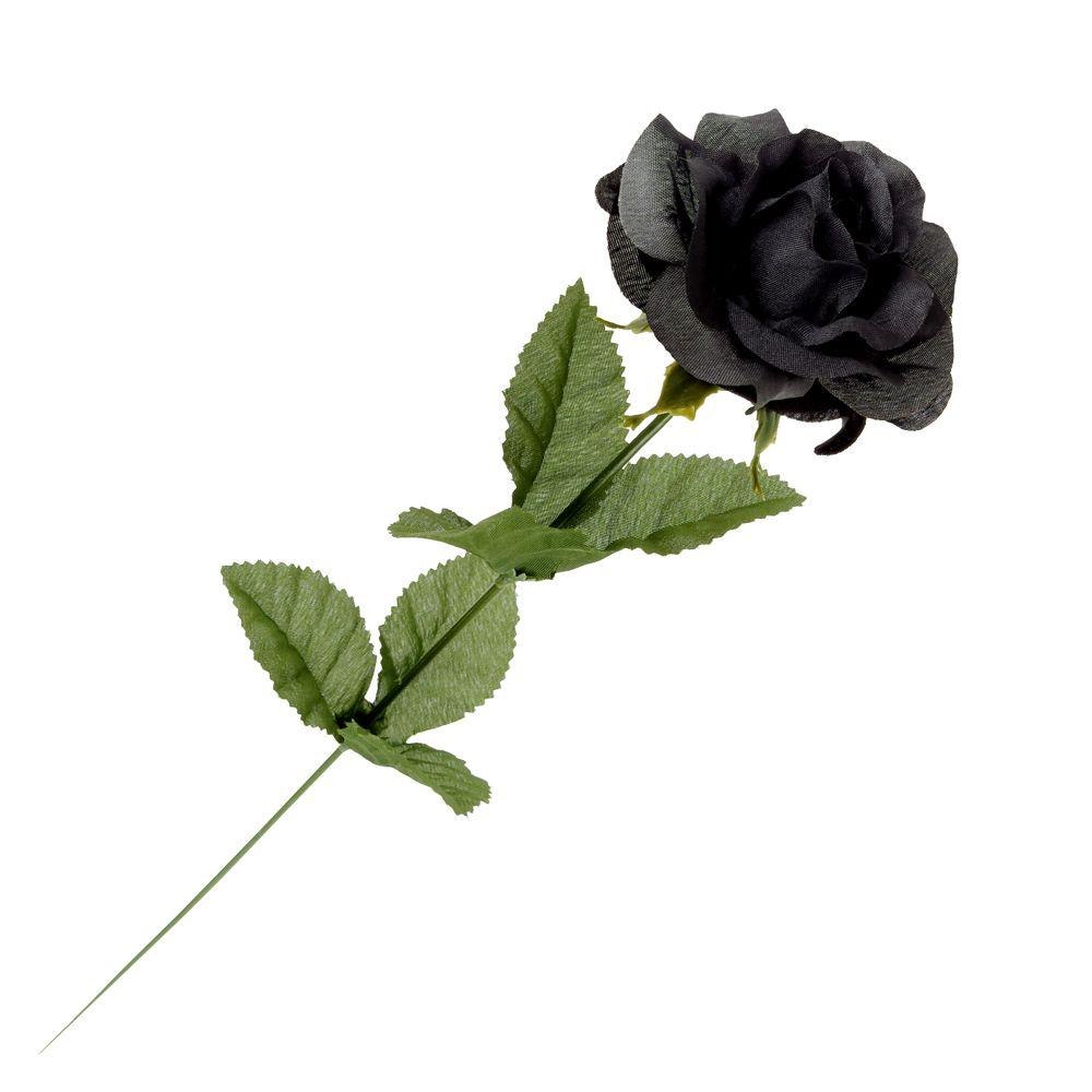 Gothic Black Imitation Rose In 2021 Black Rose White Rose Png Plant Leaves