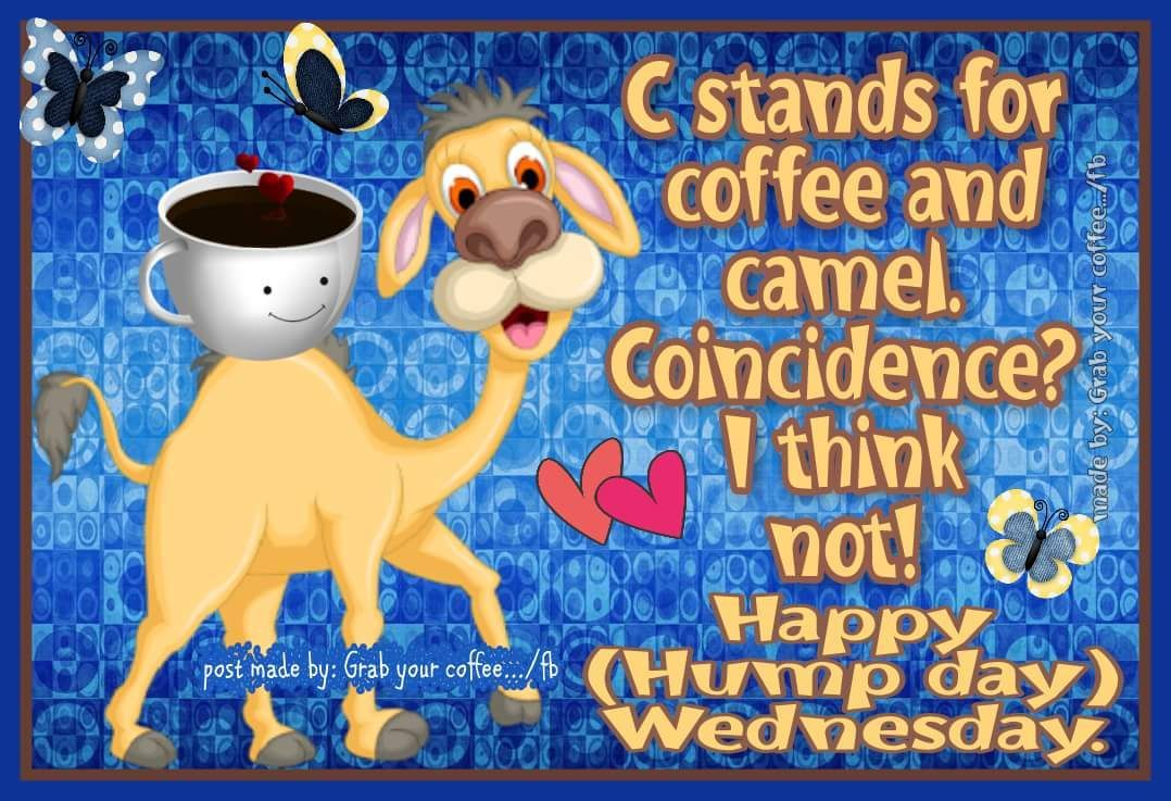 Happy Hump Day Wednesday (With images) Wednesday hump