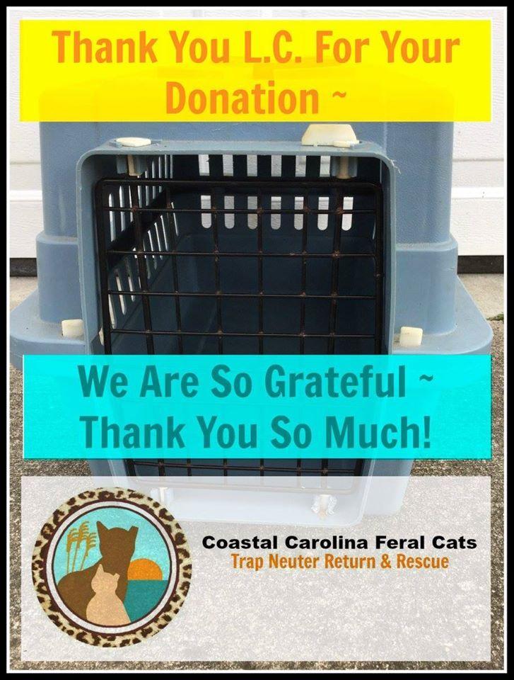 Pin by coastal carolina feral cats t on ccfc thank you
