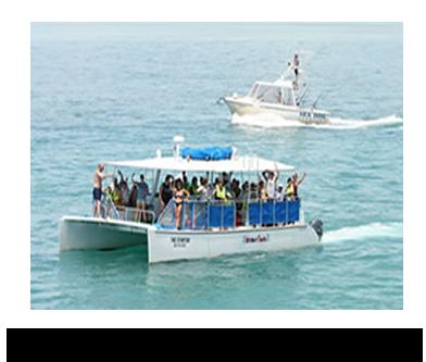 Starfish Snorkeling Of Marathon Snorkel Tours To Sombrero Reef