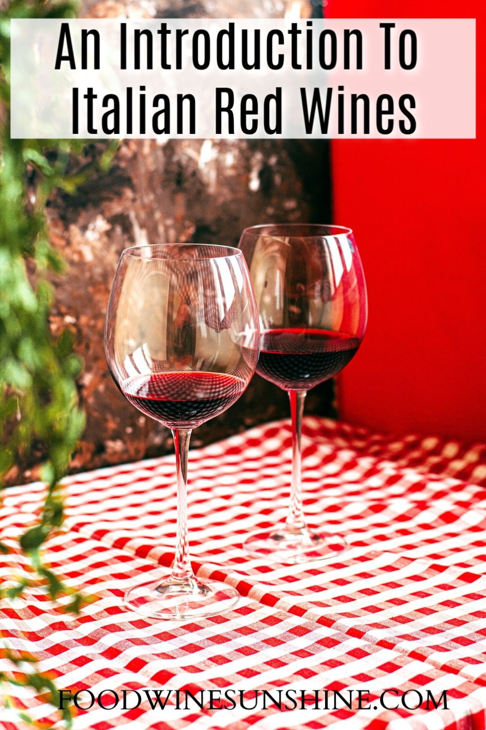 An Introduction To Italian Red Wines In 2020 Red Wine Wine Recipes Wines