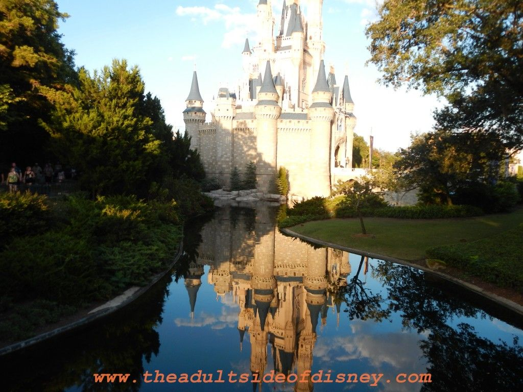 15 Tips For Your First Walt Disney World Vacation by Contributing Author Dawn Gosdin