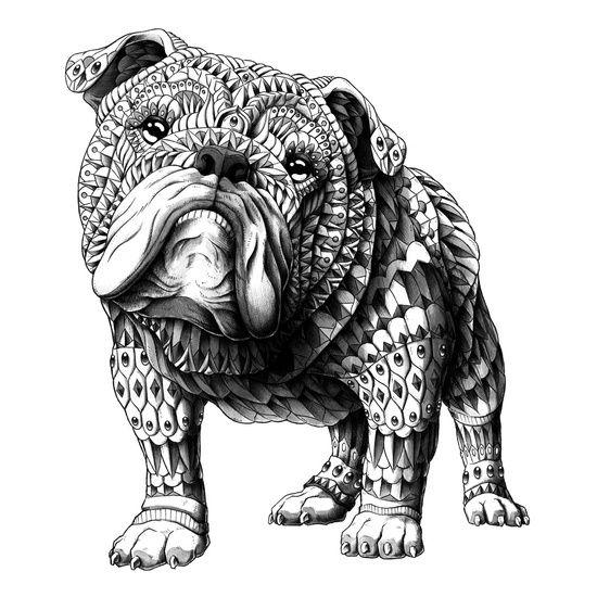 English Bulldog Art Print | English bulldog art, Bulldog ...