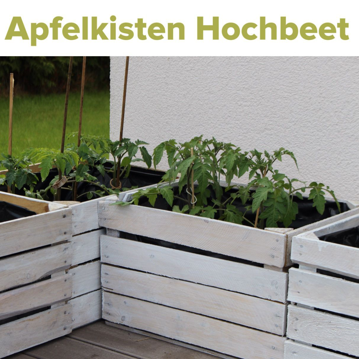 obstkisten upcycling hochbeet gem sepflanzen growing plants pinterest garten hochbeet und. Black Bedroom Furniture Sets. Home Design Ideas
