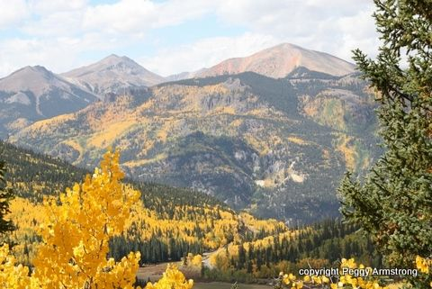 One of the Joys in my life...  Mountains, fall foliage, colors, Colorado.