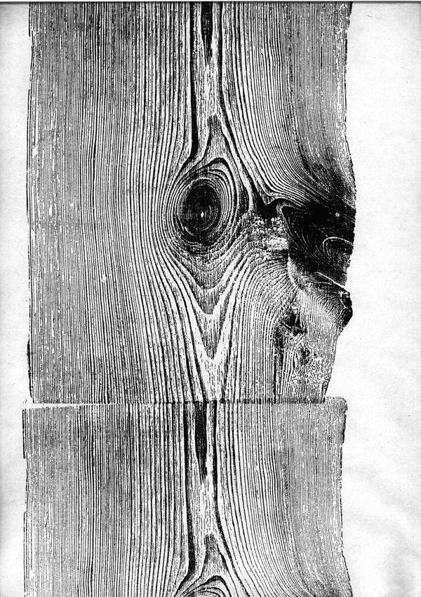 wood : Martha Richter
