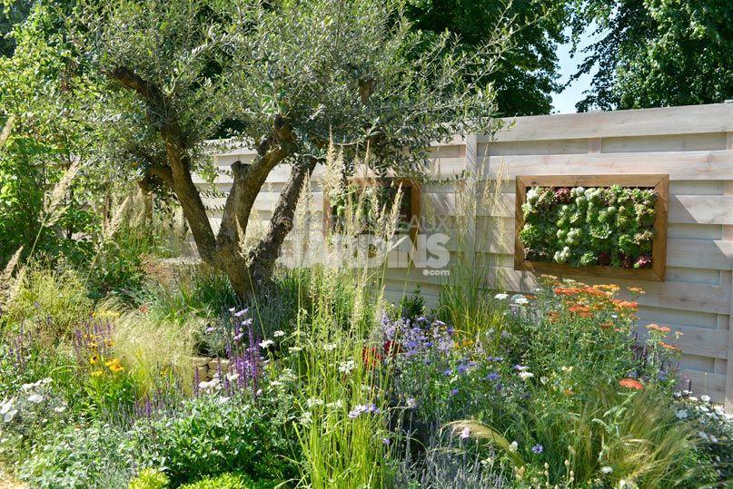 NPAC_1307150414   Jardin méditerranéen   Pinterest   Tableau ...