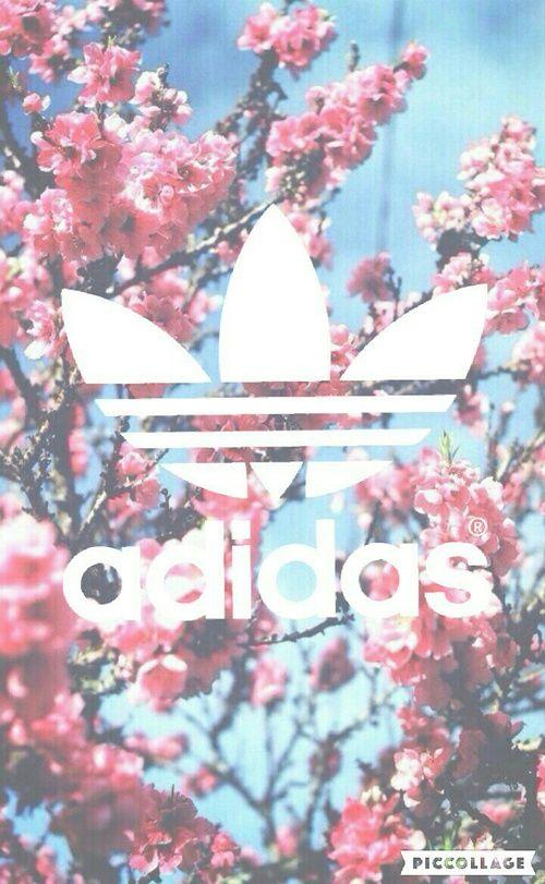 Image De Adidas Flowers And Wallpaper Adidas Hintergrundbilder