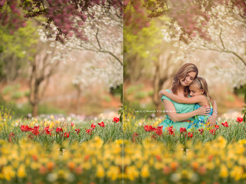 photography tutorials pdf free download