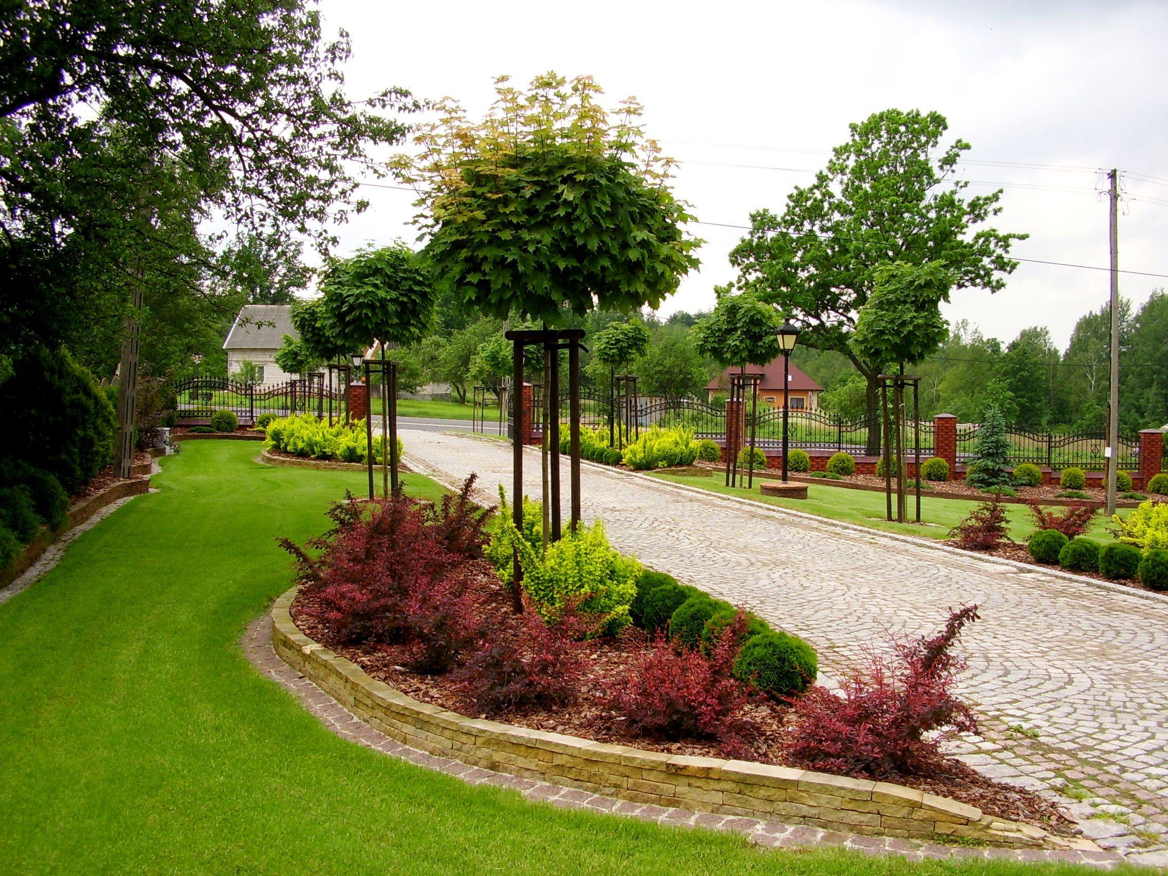 Aleja Wjazd Do Domu Jednorodzinnego Ogrody Kielce Beautiful Gardens Front Yard Garden