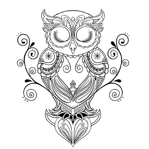 1000 ideas about tattoo coruja on pinterest owl tattoos - Outline gufo stampabile ...