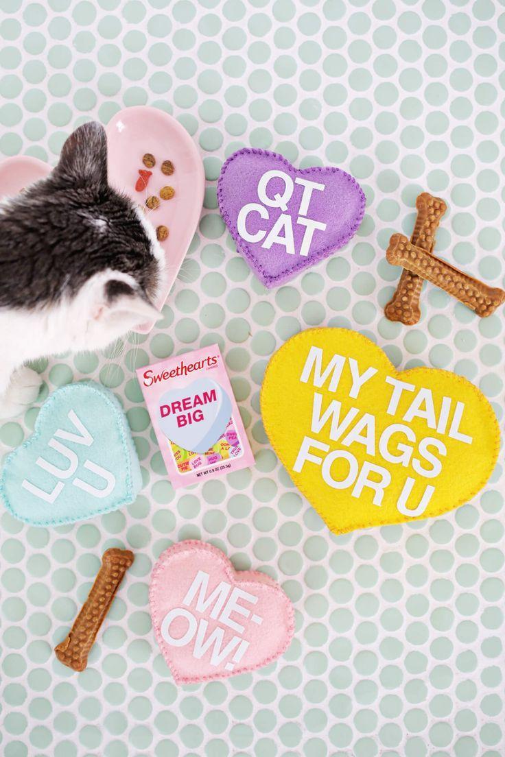 DIY Conversation Heart Pet Toys