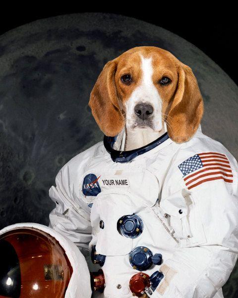 Pet Portrait As Nasa Astronaut Fun Dog Portrait Custom Portrait In Space Suit Kid Portrait Personalized Gif Pet Portraits Dog Portrait Drawing Dog Portraits