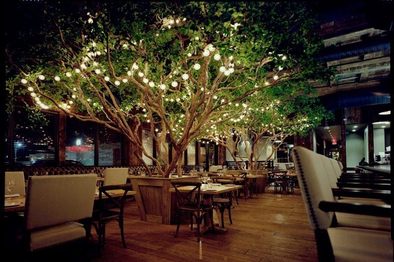 Fabricated Black Olive Tree At A Restaurant Outdoor Restaurant Patio Outdoor Restaurant Lighting Restaurant Exterior