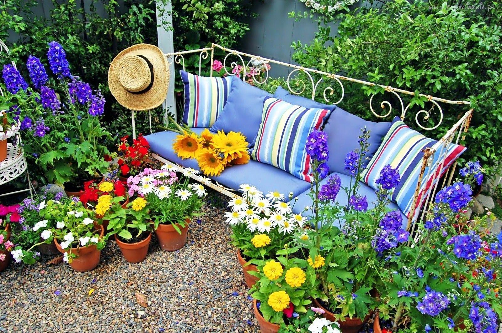 Ogrod Sloneczniki Kolorowe Kwiaty Lawka Poduszki Kapelusz Gardening Design Diy Diy Garden Decor Colorful Garden