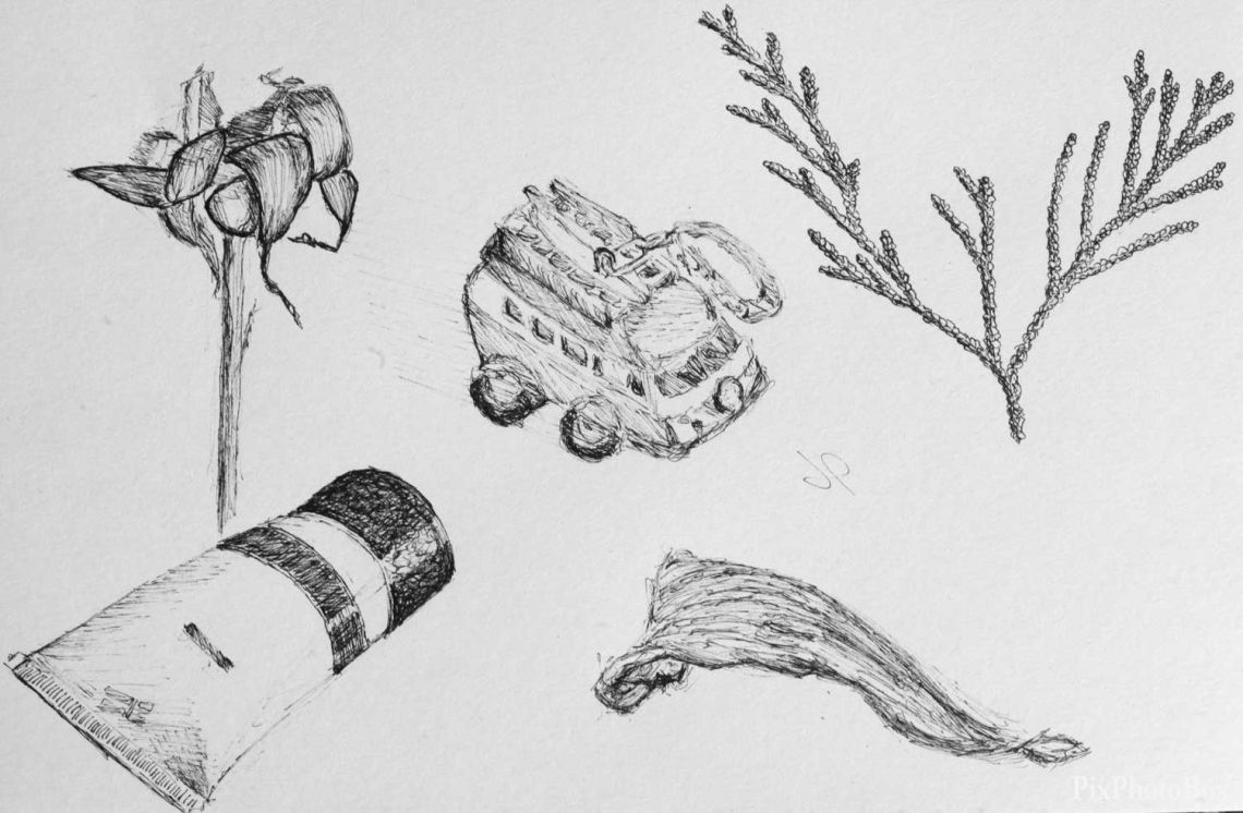 Five doodles, three of which are from nature, one a vw camper van keyring and hand cream.  Part of my daily drawing.