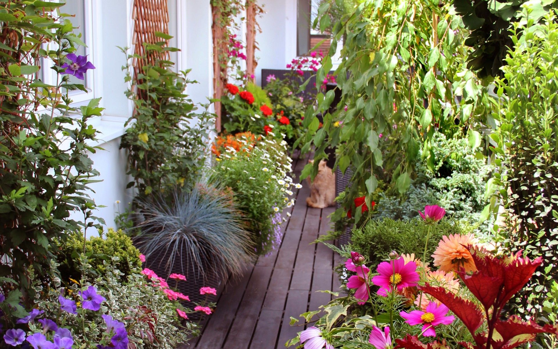 balkongarten mit blumen und kräutern | rooftop garden | pinterest