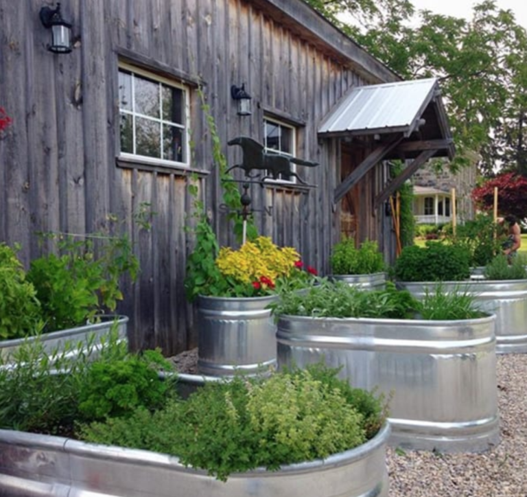 15 Unique and Beautiful Container Garden Ideas - S