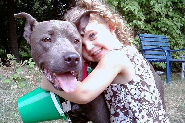 5 Reasons So Many Pit Bulls Love Kids