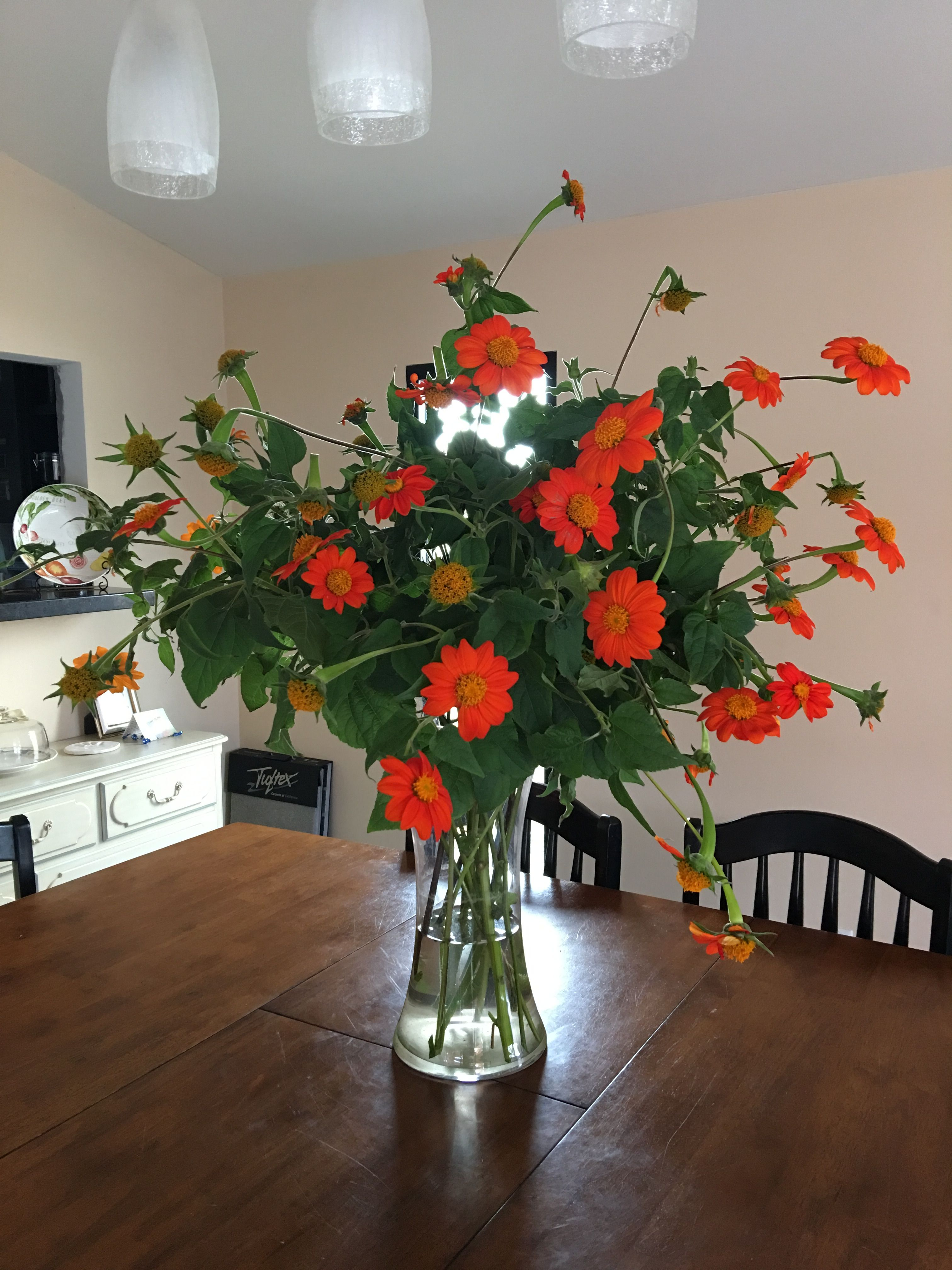 This arrangement is crazy orange sunflowers were from my red canoe