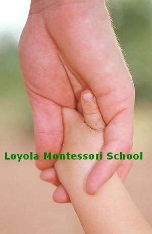Loyola Montessori School in Limerick have excellent teachers who help the children in the proper way on 061 415956