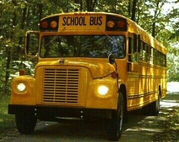 Early 70 S Vintage International Stagecoach School Bus School Bus