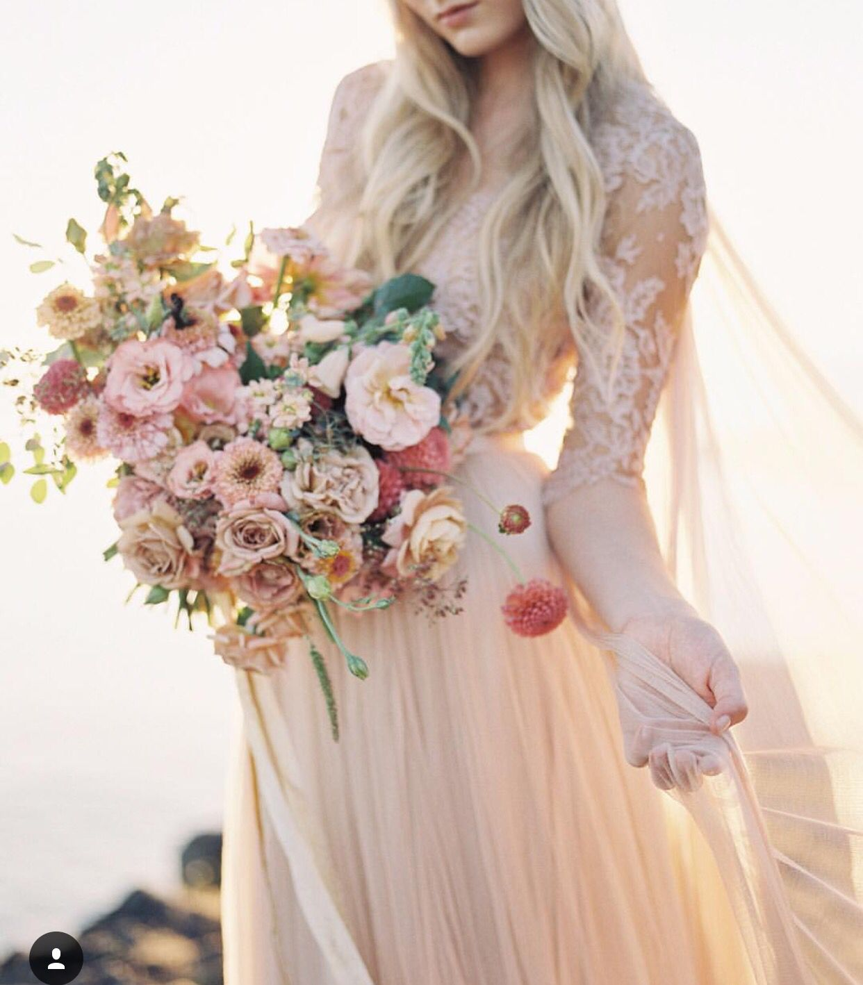Pale pink everything pinterest pale pink