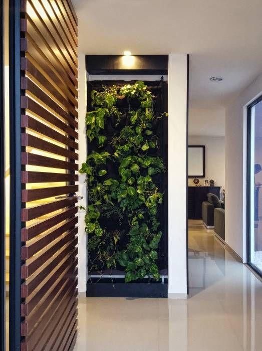 Ideas, imágenes y decoración de hogares Escaleras minimalistas - decoracion pasillos