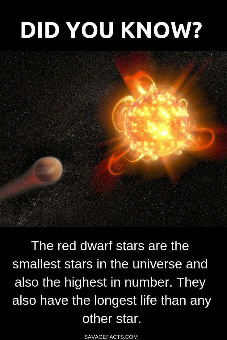 Facts About Red Dwarf Stars Astronomy Facts Star Science Space Facts
