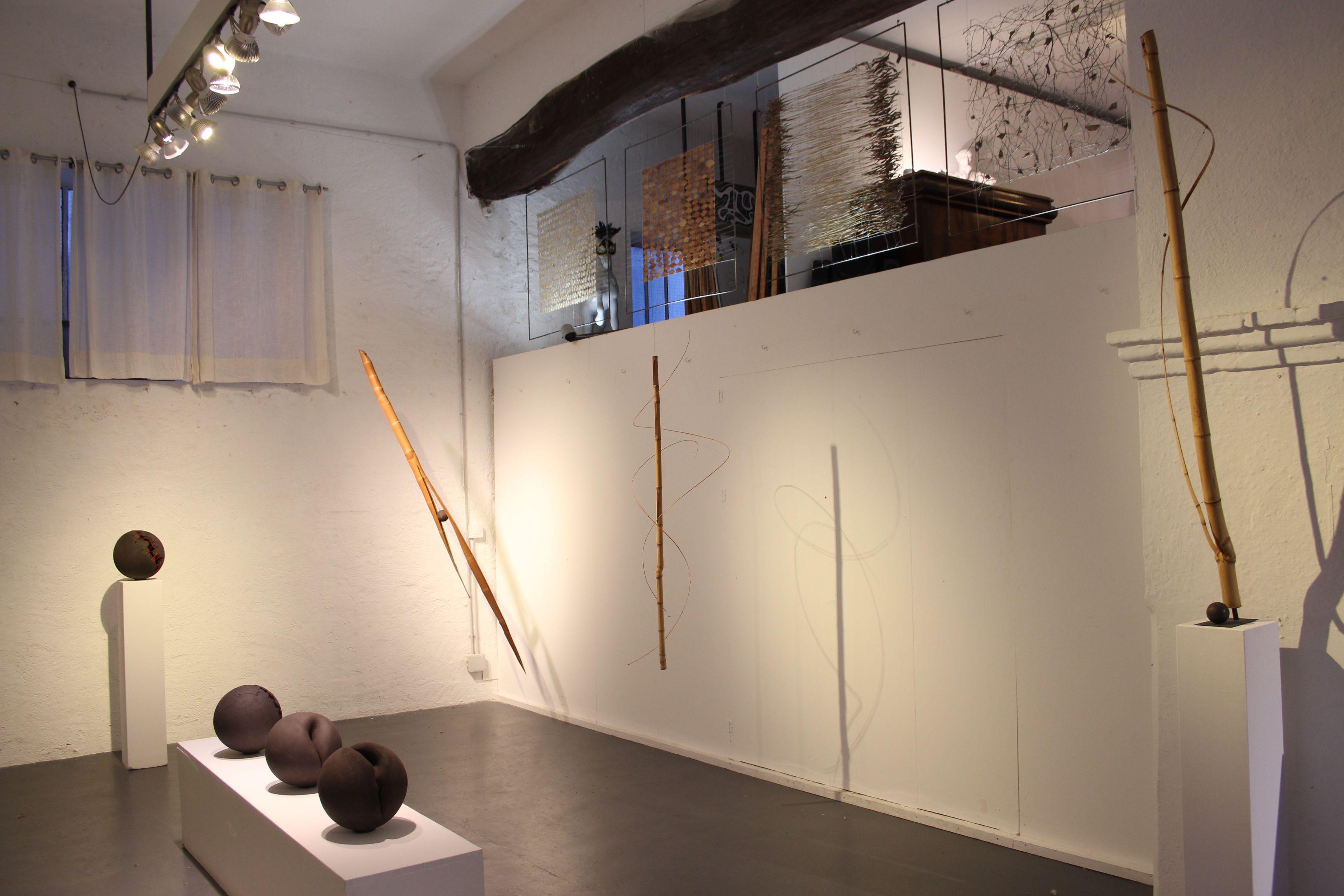 taboo bamboo exhibiiton. Cadaques. Gallery Patrick Domken