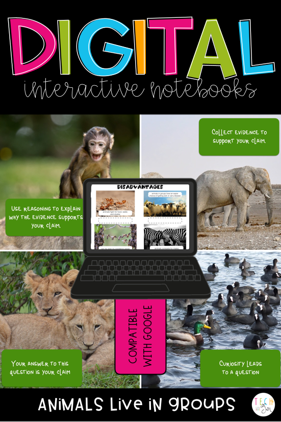 Google Interactive Notebooks Animals Live in Groups