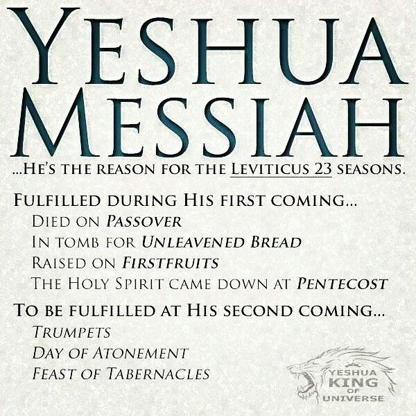 Yeshua Messiah He S The Reason For The Leviticus 23 Seasons Fulfilled During His First Coming Died On Passover Bible Facts Bible Truth Messianic Judaism