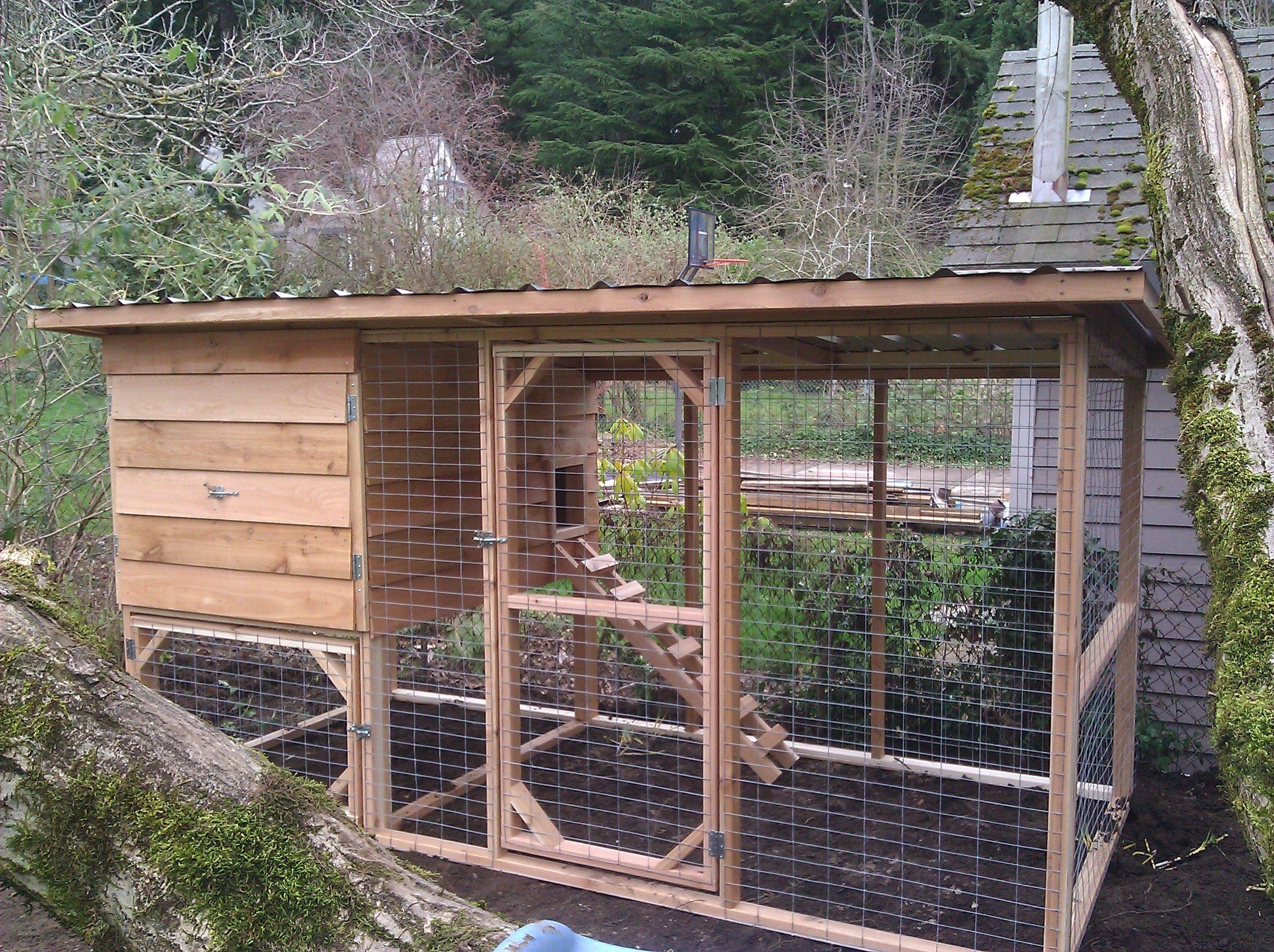 chicken coop pics your chickens history of chickens info on