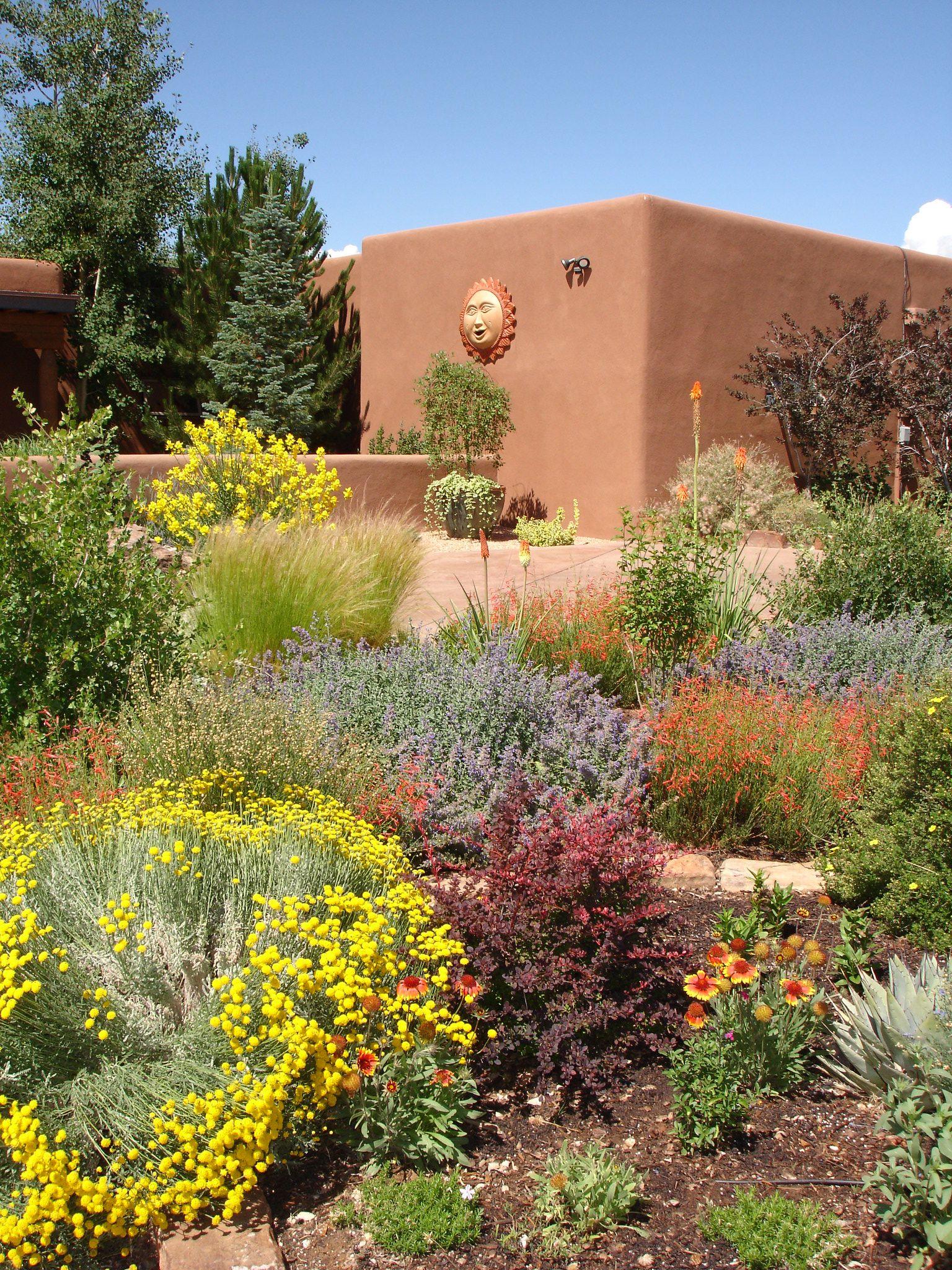 A Desert Garden I Love The Colorful Desert High Desert