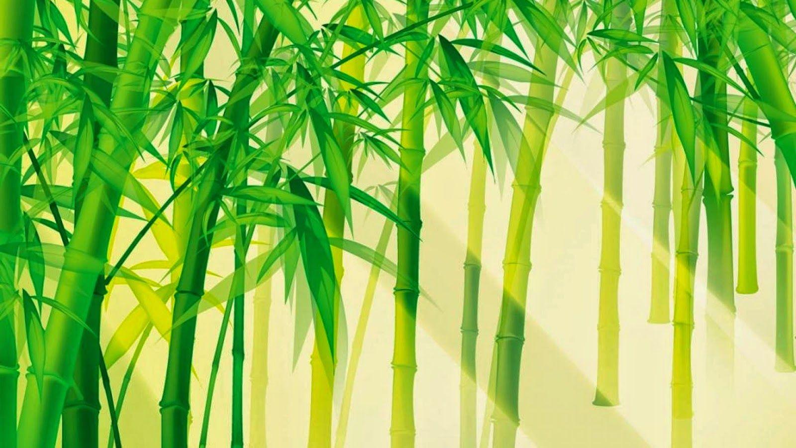 Pin By Lan Amb On Khan Mat Canvas Drawings Bamboo Background