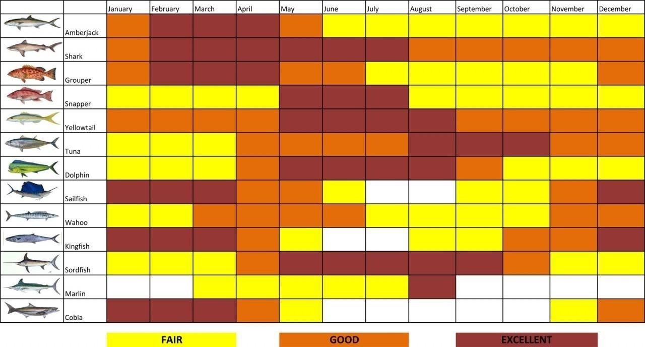Lunar Fishing Calendar 2022.General Fisherman 039 S Calendar Lunar Calendar For August 2019 Year Catch Fishing Calendar Lunar Calendar Calendar Examples