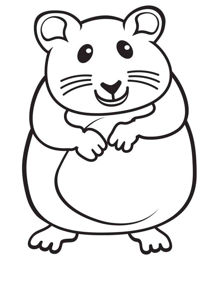 Free Cute Hamster Coloring Pages Printable There Are Many Types Of Hamsters That You Can Choose Ranging Fr In 2020 Animal Coloring Pages Coloring Pages Cute Hamsters