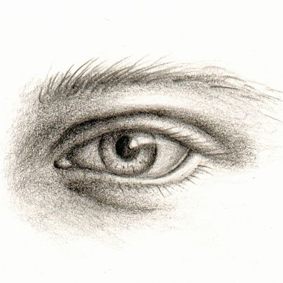 Pin by Rebecca Troyer on drawing class | Pencil portrait ...