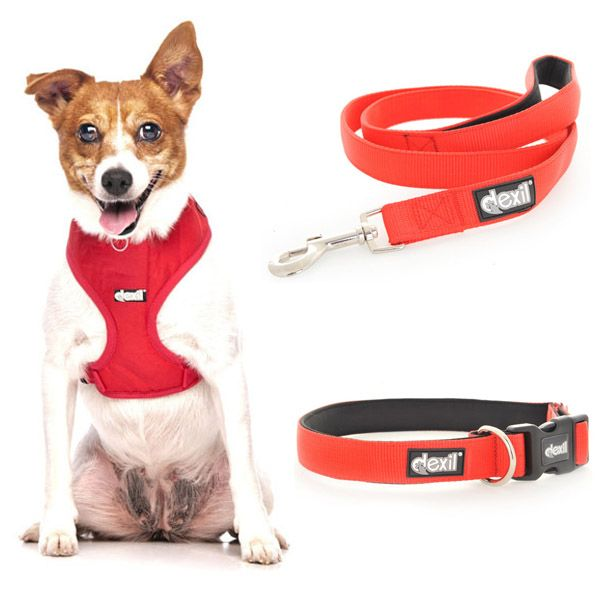 Dexil FLASH RED Dog Collar, Vest Harness and matching lead Combo Set