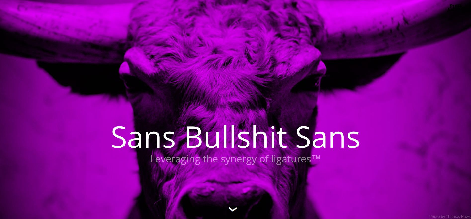 Crap-detecting Bullshit Sans - The font that replaces many buzzwords by a Comic Sans-styled censorship bar. Made by Roel Nieskens, who exchanged the ligatures in this font with bullshit, by adding bullshit expressions to the OpenType-Ligatures-Table. Well done!