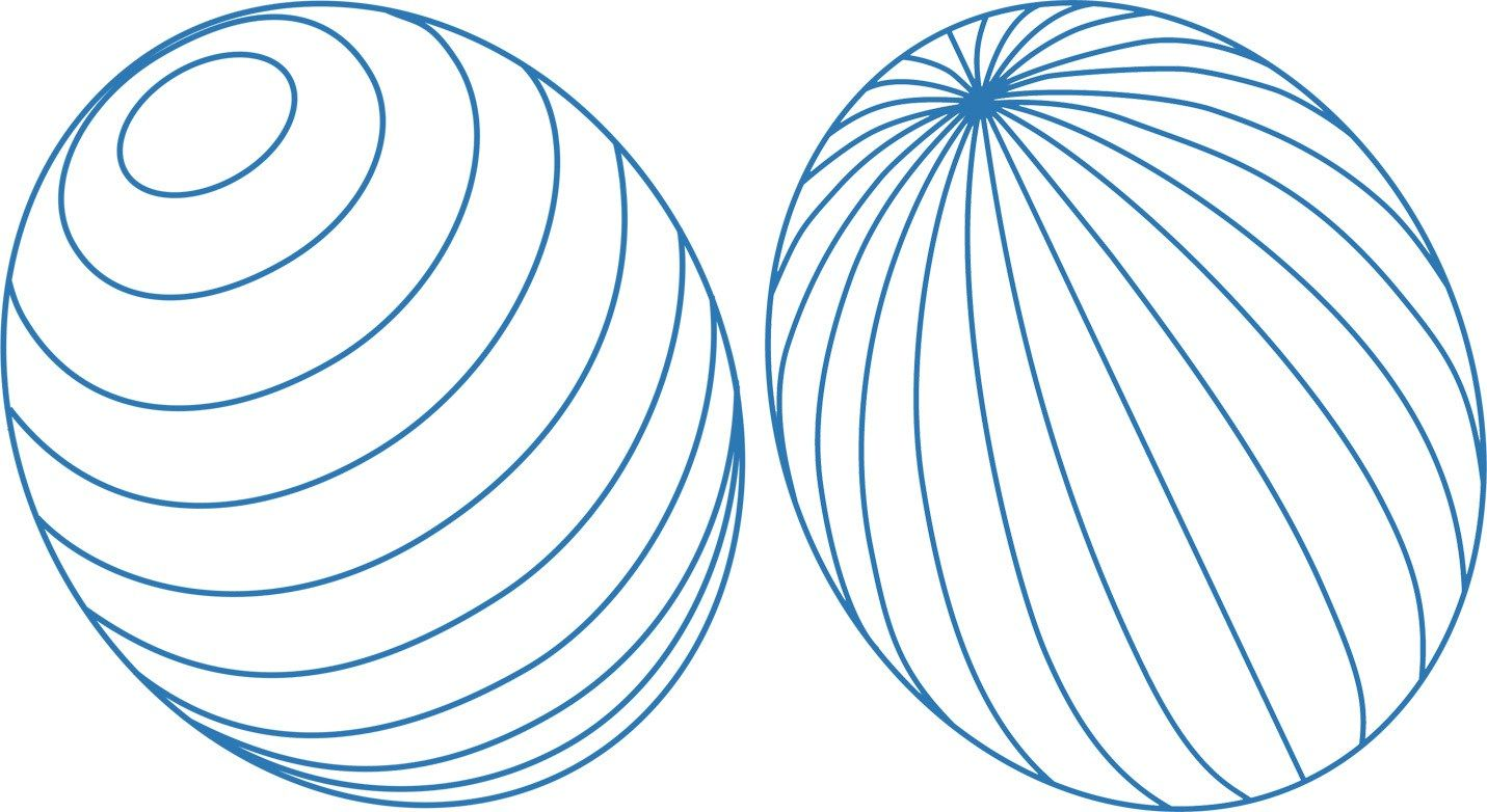 How Do Straight Lines Curve On A Rounded Surface