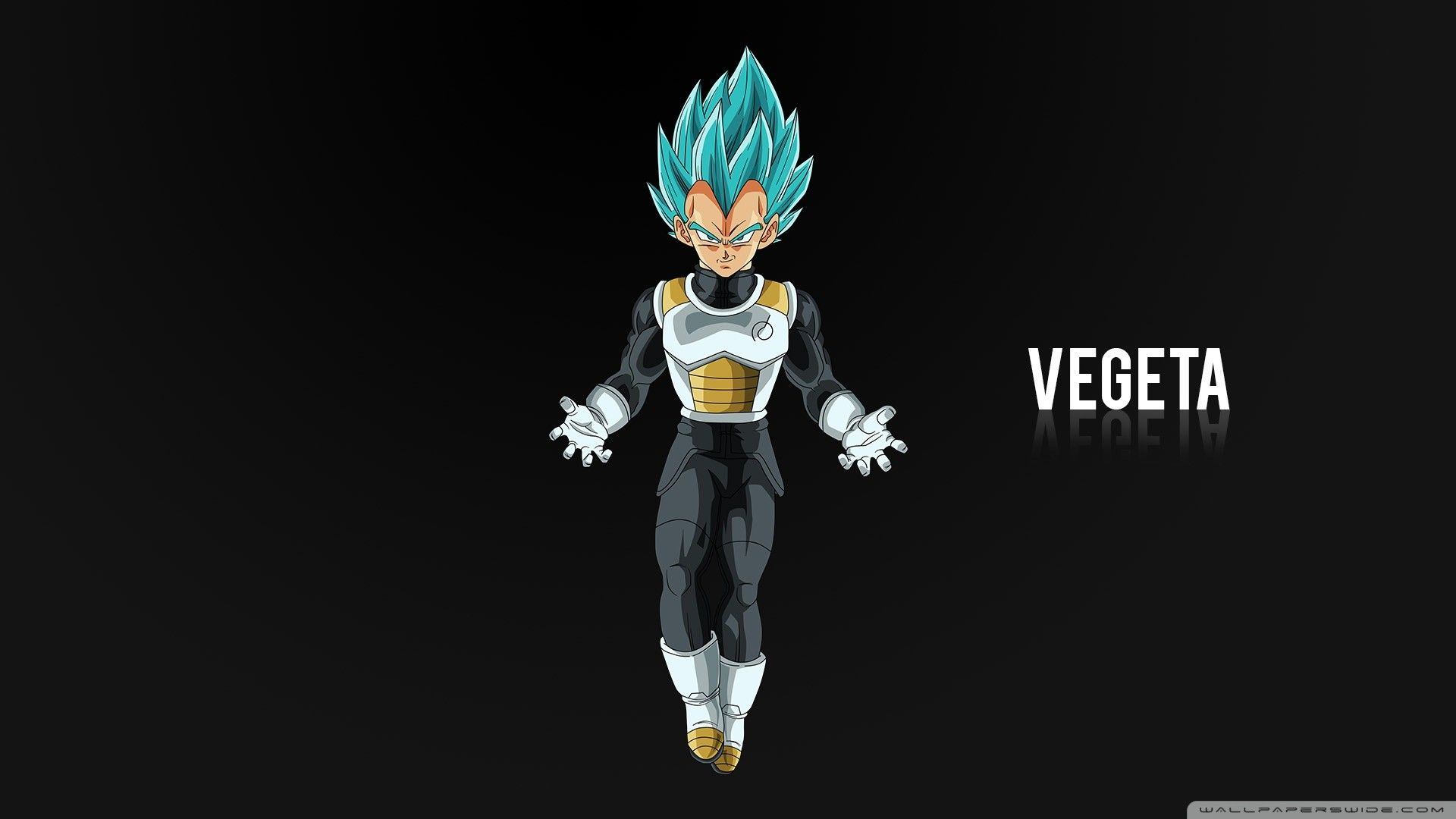 Pin By Rocki On Vegeta Goku In 2020 Hero Wallpaper Iphone Wallpaper Hipster Android Wallpaper Anime