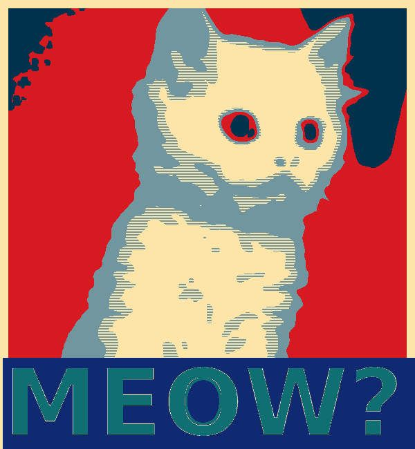 YES WE CAT!