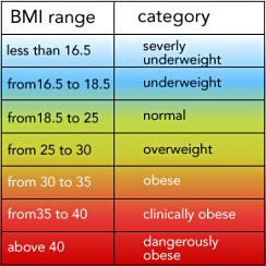 Body Mass Index Calculator  How To Lose Weight