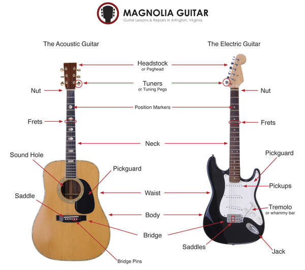 Clear Diagram Of Guitar Parts Residential Electrical Symbols