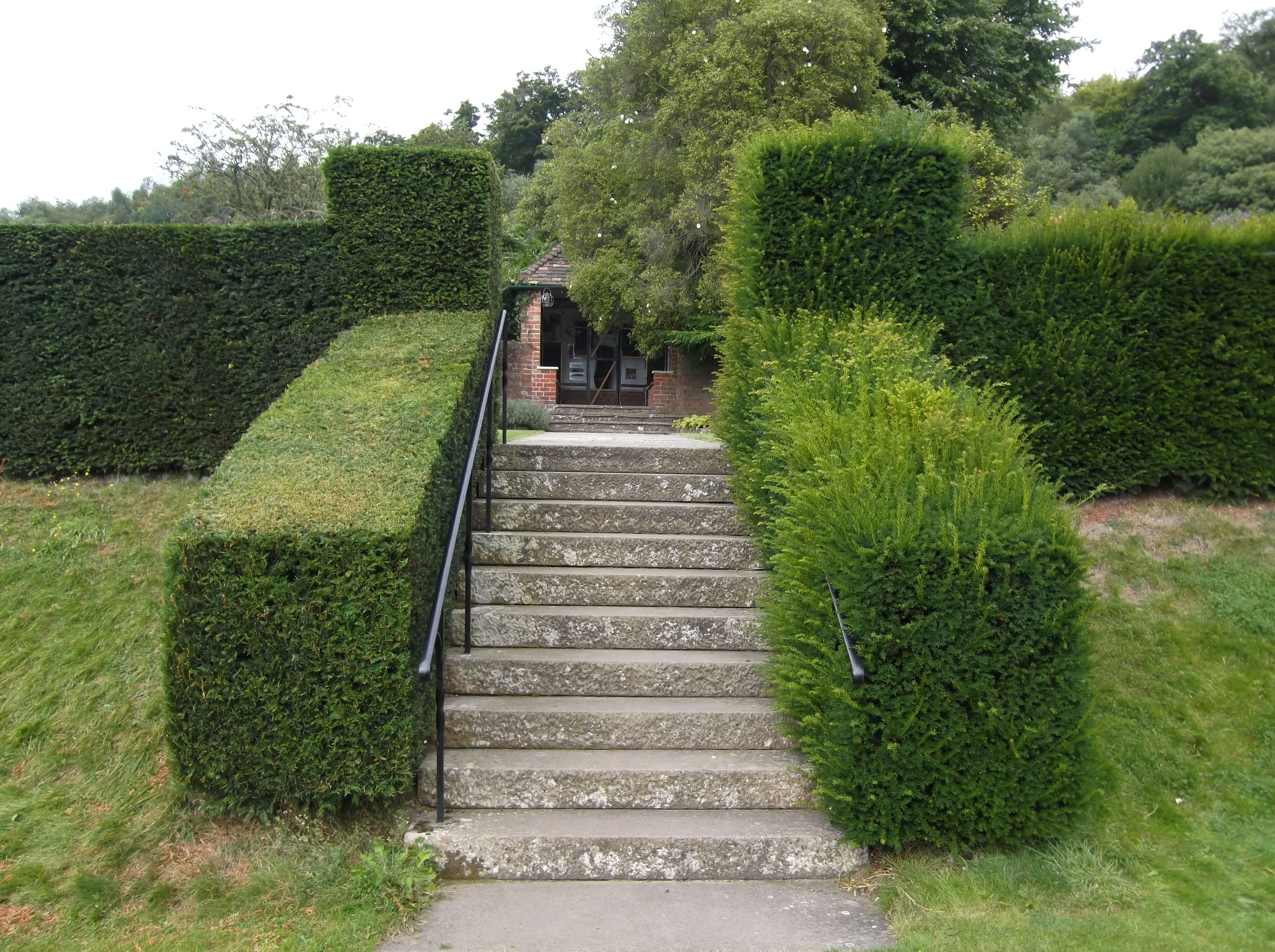 the cutting hedge of gardening garden shrubs. Black Bedroom Furniture Sets. Home Design Ideas