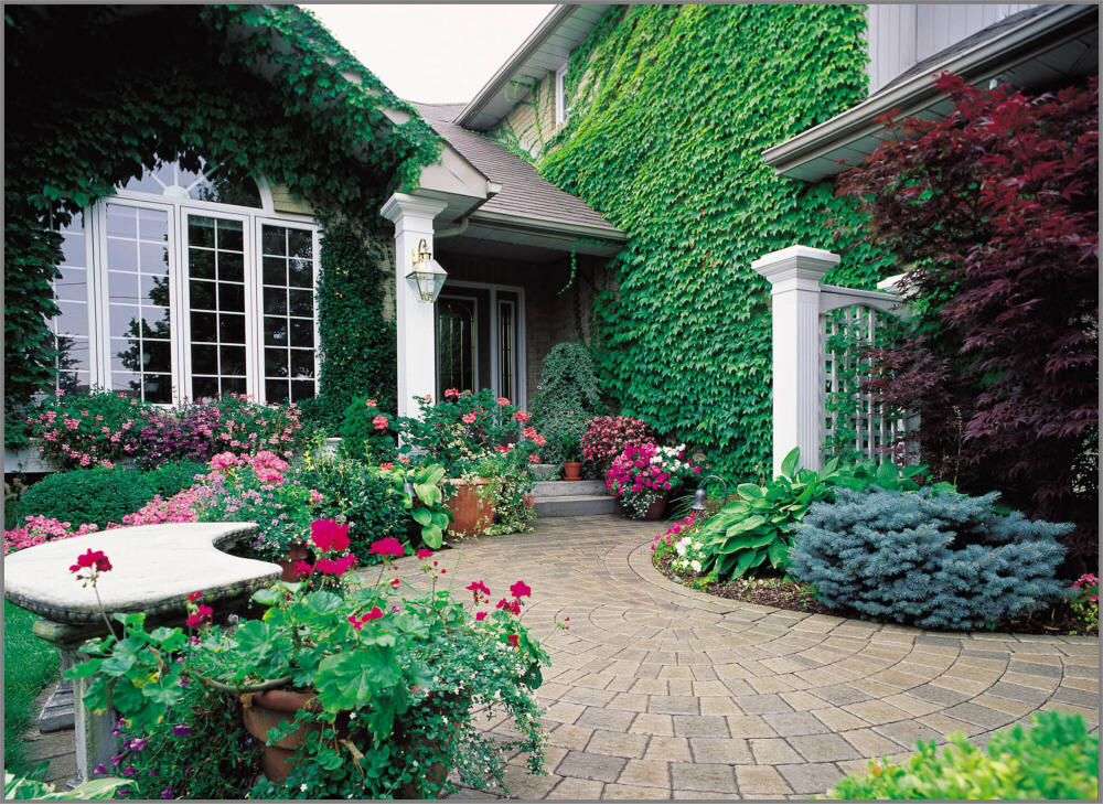 Perennials shrubs and trees garden design plans