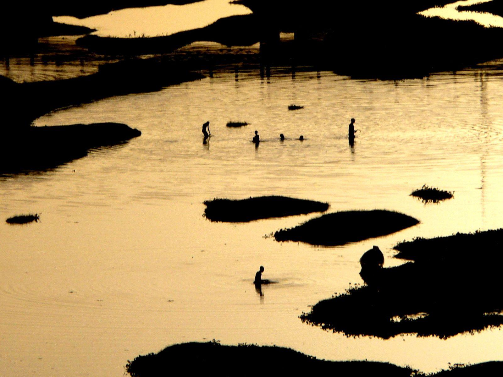 Soleil couchant sur le fleuve Niger, Niamey s'endort au rythme du fleuve, l'or envahit l'atmosphère lourde... traversée au rythme des pas . Bien à toi !