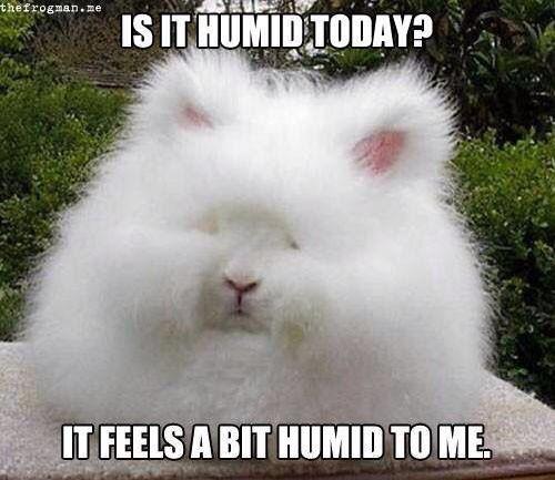 Puffy hair